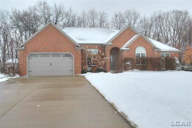 4606 Waynick Drive, Raisin Twp, MI 49229 (MLS #56050003804) :: The Toth Team