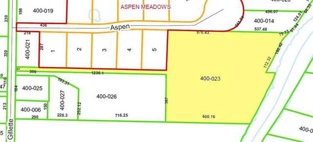 9043 Aspen Ln, Flushing Twp, MI 48433 (#5050003820) :: Springview Realty