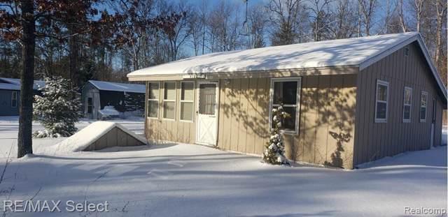 4160 Dan Drive, Summerfield Twp, MI 48625 (#2200008199) :: The Buckley Jolley Real Estate Team