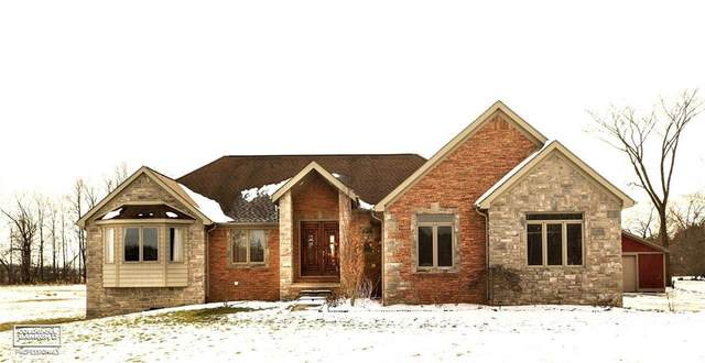 36558 Weber Road, Richmond Twp, MI 48062 (#58050005666) :: RE/MAX Nexus