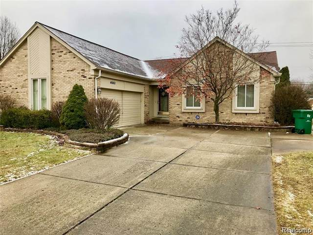 46661 Fox Tail Court, Macomb Twp, MI 48044 (#2200011956) :: The Buckley Jolley Real Estate Team