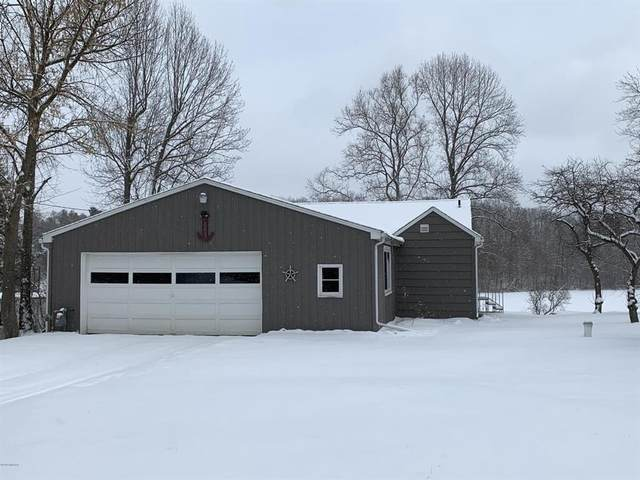 1321 Hickory Rd, HILLSDALE CITY, MI 49242 (#62020005523) :: The Alex Nugent Team | Real Estate One