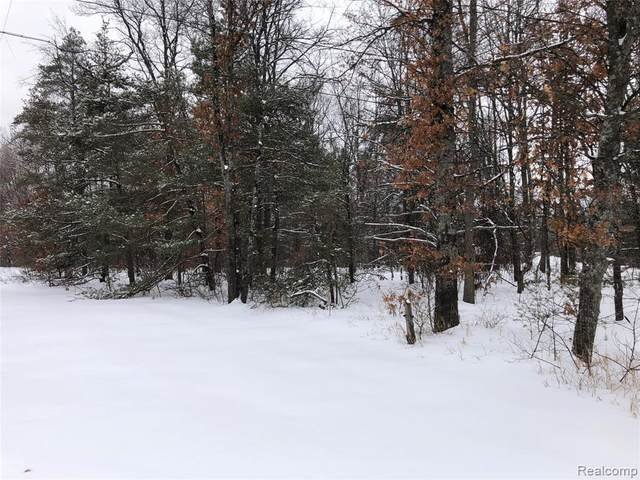 0 W Six Mile Road, Beaver Creek Twp, MI 49738 (MLS #2200012385) :: The John Wentworth Group