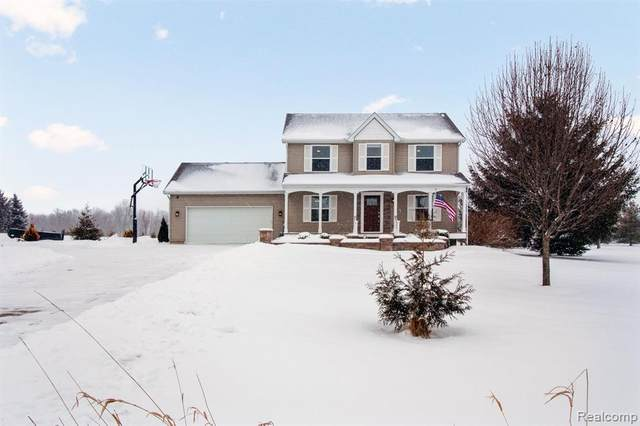 7765 Red Rock Drive, Handy Twp, MI 48836 (#2200012506) :: The Buckley Jolley Real Estate Team