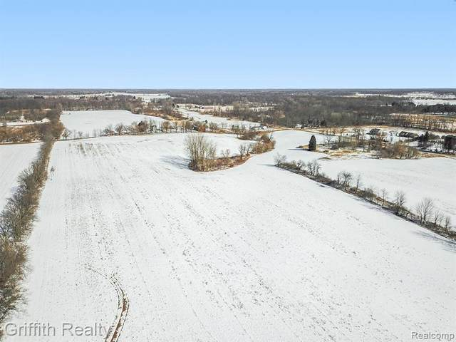 0000 Stow Road, Fowlerville Vlg, MI 48836 (#2200014024) :: The Buckley Jolley Real Estate Team