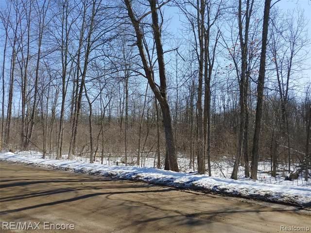 Parcel A Munger Road, Rose Twp, MI 48442 (#2200014362) :: Springview Realty