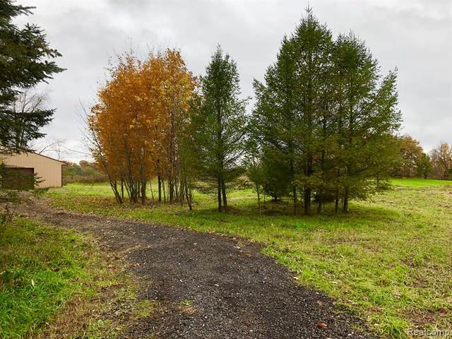 00 Lange Road, Marion Twp, MI 48843 (#2200014412) :: The Mulvihill Group