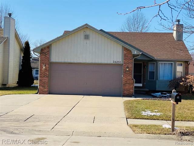 34255 Kercheval Street, Clinton Twp, MI 48035 (#2200015063) :: The Buckley Jolley Real Estate Team