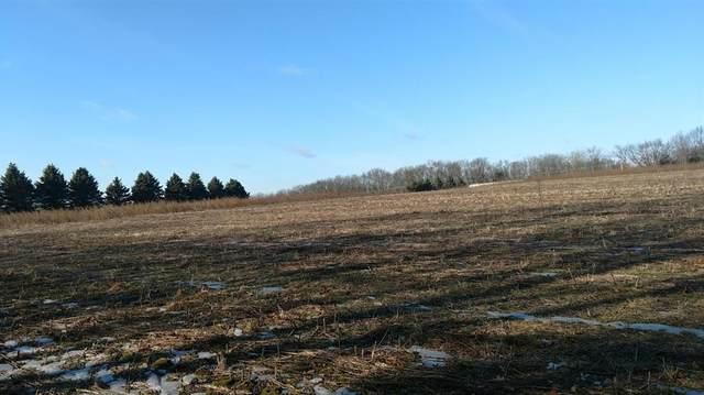 0 Stofer Parcel G Road, Lyndon, MI 48118 (#543271497) :: The Buckley Jolley Real Estate Team