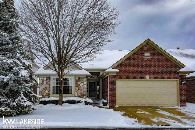 6803 N Central Park, Shelby Twp, MI 48317 (MLS #58050006846) :: The Toth Team