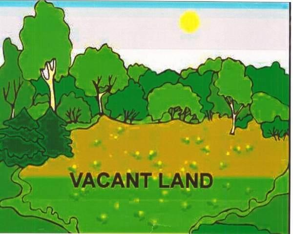 50645 Summit View Drive, Macomb Twp, MI 48044 (#58050007379) :: Alan Brown Group