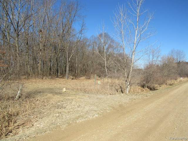 0 S. Gregory Road, Iosco Twp, MI 48137 (#2200021522) :: The Buckley Jolley Real Estate Team