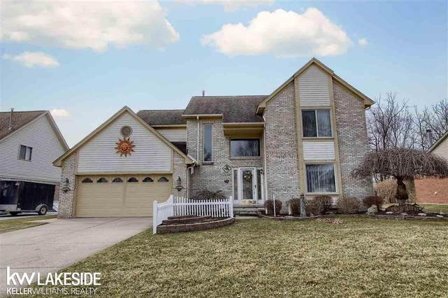 28108 Ruby Ct, Chesterfield Twp, MI 48047 (#58050008685) :: Alan Brown Group