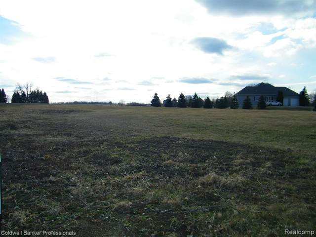 Par B Myers Road, Lapeer Twp, MI 48446 (#2200023344) :: RE/MAX Nexus