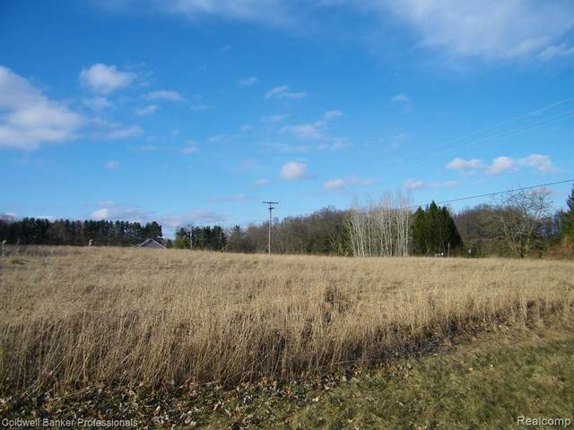 Outlot D Weir Road, Mayfield Twp, MI 48446 (MLS #2200023360) :: The Toth Team