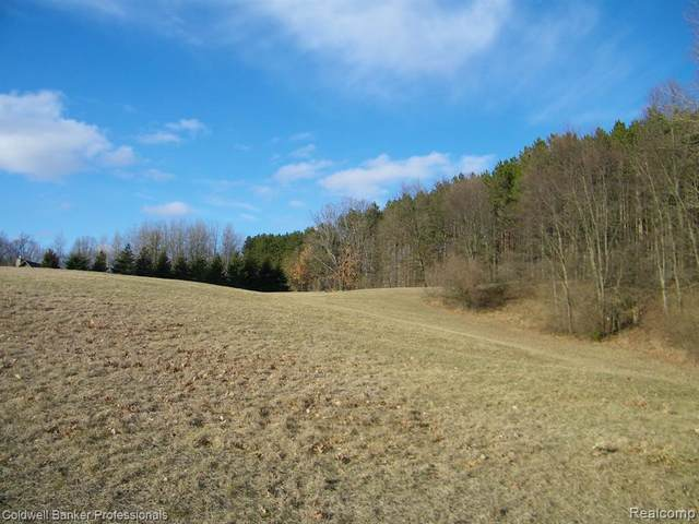 Unit 18 Candace Drive, Mayfield Twp, MI 48446 (MLS #2200023367) :: The Toth Team