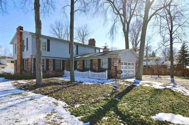 6770 Donnybrook Dr, Shelby Twp, MI 48316 (#58050009046) :: Alan Brown Group