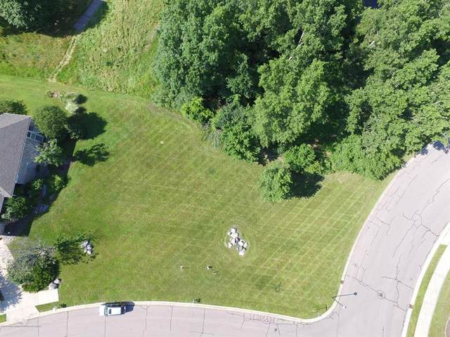 6247 W Golfridge Drive, Meridian Charter Twp, MI 48823 (#630000245149) :: GK Real Estate Team
