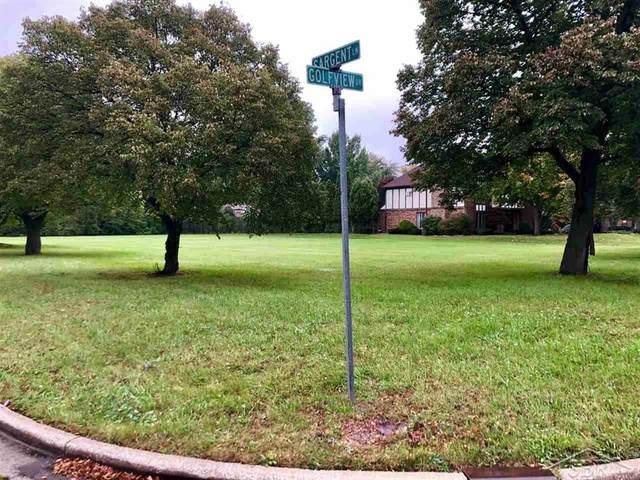 Golfview, Saginaw Twp, MI 48638 (MLS #61050009168) :: The John Wentworth Group