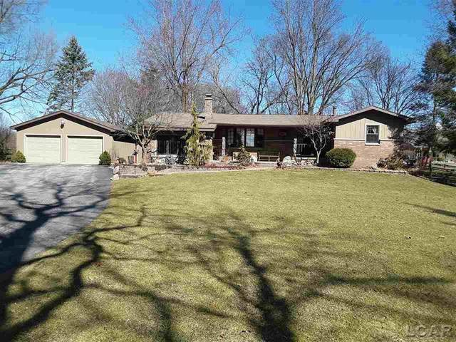 3272 Chase, Raisin Twp, MI 49221 (MLS #56050009182) :: The Toth Team
