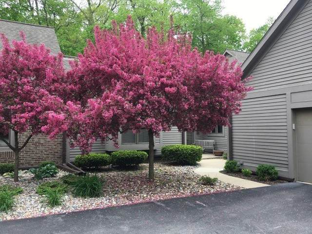 4647 Cottonwood Drive, Lodi Twp, MI 48108 (#543272312) :: Duneske Real Estate Advisors