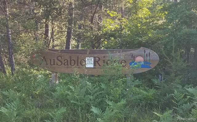 00 Wobbler Trail, SOUTH BRANCH TWP, MI 48653 (MLS #2200026661) :: The Toth Team