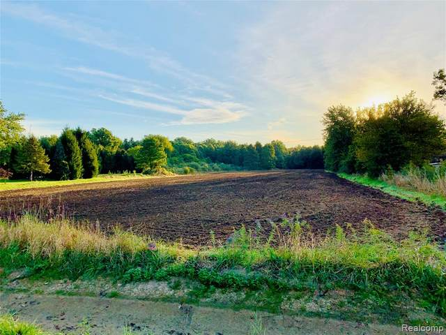 Vacant Bell, Huron Twp, MI 48164 (MLS #2200027963) :: The Toth Team