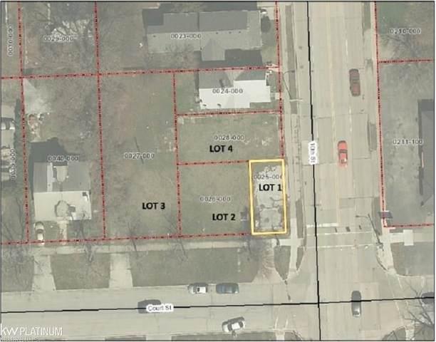 1100 10TH STREET, Port Huron, MI 48060 (#58050010348) :: Novak & Associates