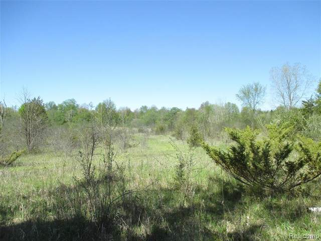 0 State Road, Atlas Twp, MI 48438 (MLS #2200033736) :: The John Wentworth Group