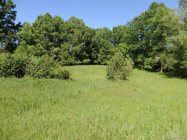 Vacant N. Baldwin Rd., Orion Twp, MI 48362 (MLS #2200034225) :: The John Wentworth Group