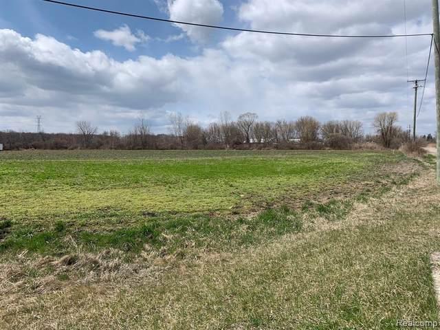 72899 Old Farm Trail, Armada Twp, MI 48005 (#2200035244) :: Alan Brown Group