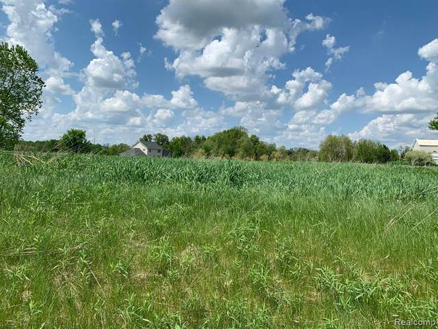 LOT 12 Doves Point, Brighton Twp, MI 48114 (#2200036718) :: The Mulvihill Group