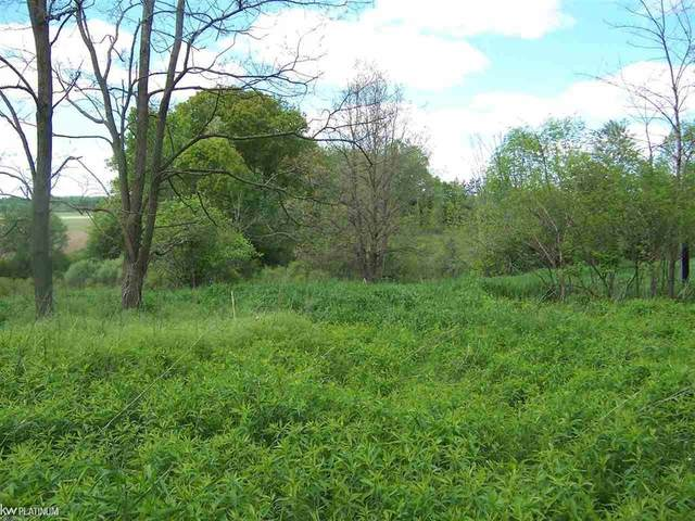 Lot E Parks Rd Vacant, Wales Twp, MI 48027 (MLS #58050012813) :: The John Wentworth Group
