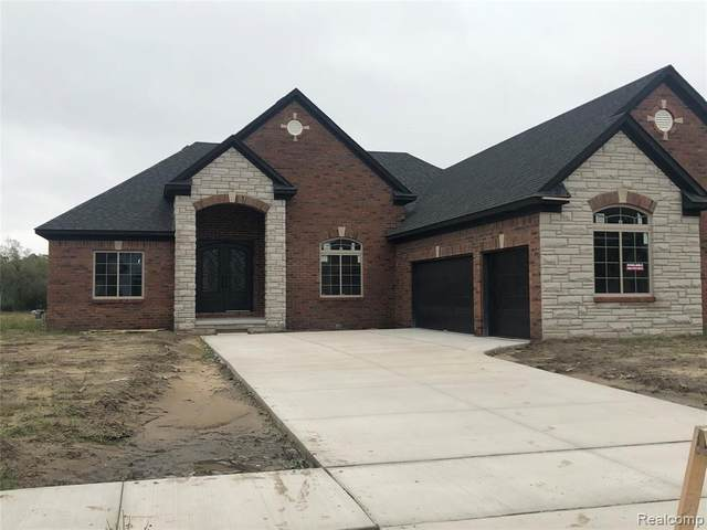 54566 Deadwood Lane, Shelby Twp, MI 48315 (#2200038468) :: Novak & Associates