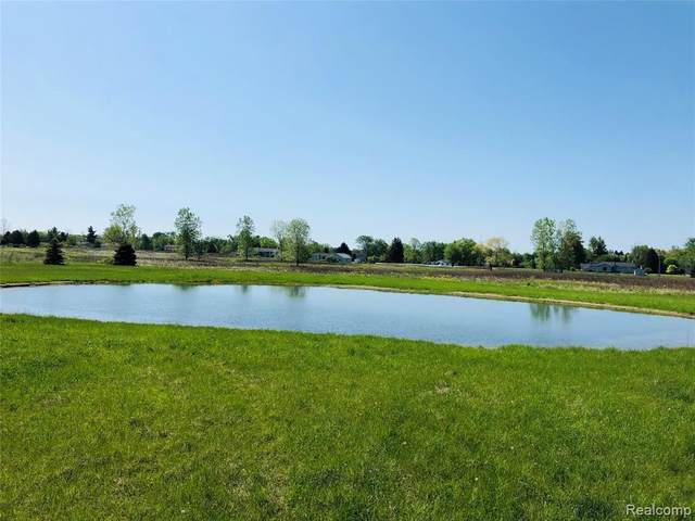 0 Putt-R-Dr, Mussey Twp, MI 48014 (MLS #2200039256) :: The Toth Team