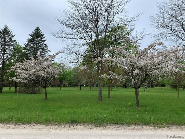 Parcel 1-B E Pond Drive, Bruce Twp, MI 48065 (#2200039516) :: RE/MAX Nexus