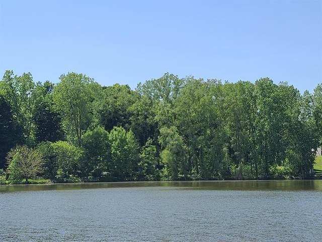 Lot 74&75 Lakeside Drive, Fulton Twp, MI 48871 (#630000246500) :: The BK Agency