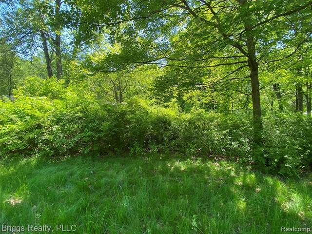 LOT 74 Melrose St, Southfield, MI 48075 (#2200039688) :: Novak & Associates