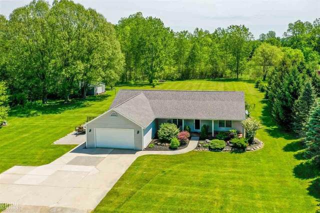 5569 Bella Villa, Almont, MI 48003 (#58050013231) :: RE/MAX Nexus