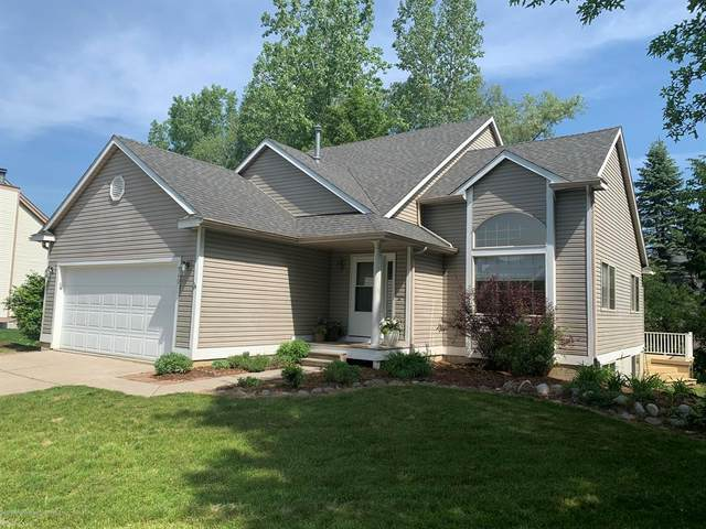 540 Winding River Court, Williamston, MI 48895 (MLS #630000246562) :: The Toth Team