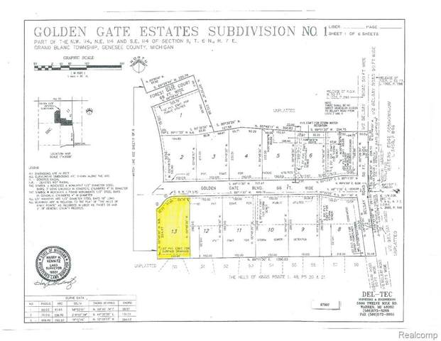 000 Golden Gate Boulevard, Grand Blanc Twp, MI 48439 (#2200041553) :: Real Estate For A CAUSE