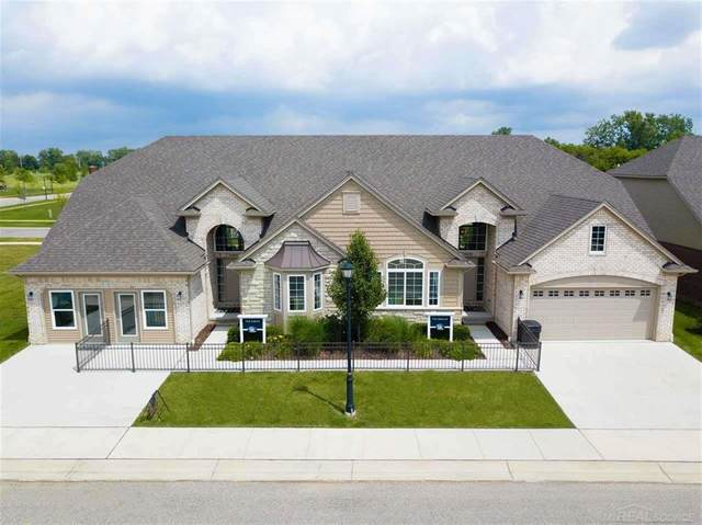 30334 Berghway Trail, Warren, MI 48092 (#58050013666) :: Novak & Associates
