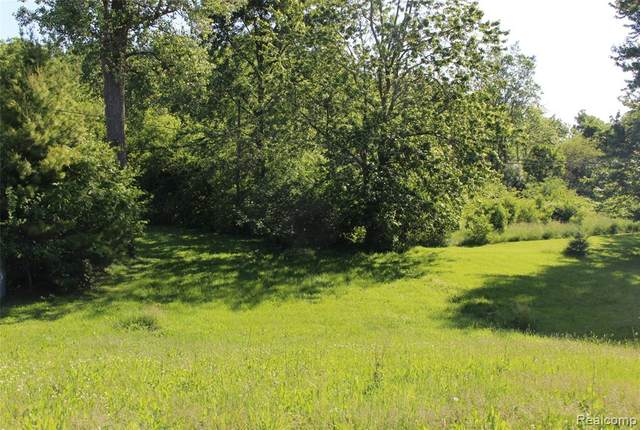 8702 Swan Creek Road, Berlin Twp, MI 48166 (#2200042154) :: The Mulvihill Group