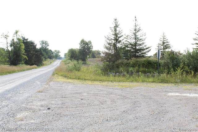 V/L Mcintyre Road, Clyde Twp, MI 48049 (MLS #2200043081) :: The John Wentworth Group