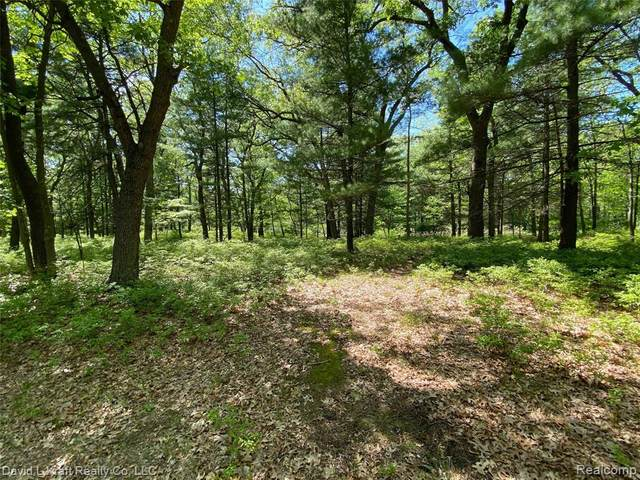 Lot 3 Donny Brook Drive, Caseville Twp, MI 48725 (#2200045321) :: Alan Brown Group