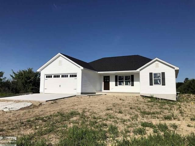 5520 Fairway, Lexington Twp, MI 48450 (#58050014784) :: The Alex Nugent Team   Real Estate One