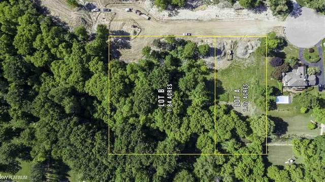 000 Hitchings Lot B, Fort Gratiot, MI 48059 (MLS #58050015617) :: The Toth Team
