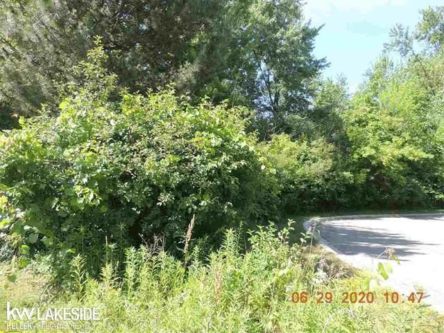 960 N Rochester Road, Addison Twp, MI 48367 (#58050015782) :: RE/MAX Nexus