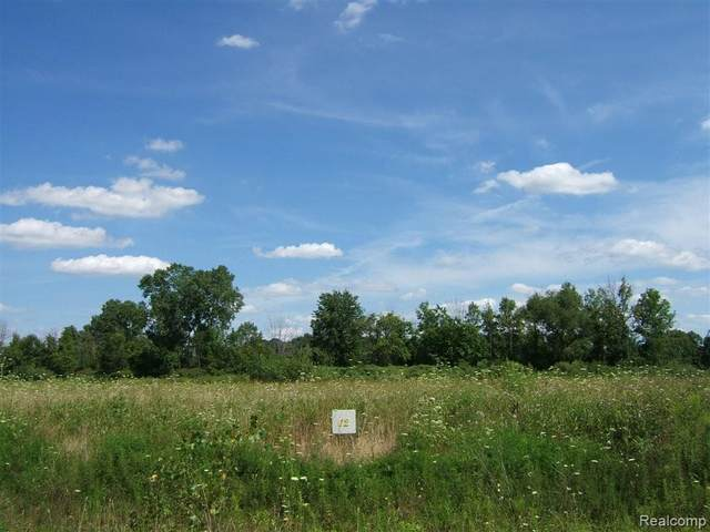 12 Ashley Lane, Berlin Twp, MI 48002 (#2200049150) :: Real Estate For A CAUSE