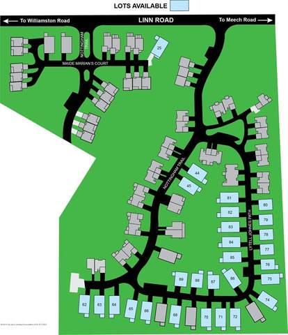 V/L Lytell Johne's Path, Williamston, MI 48895 (#630000247167) :: Novak & Associates